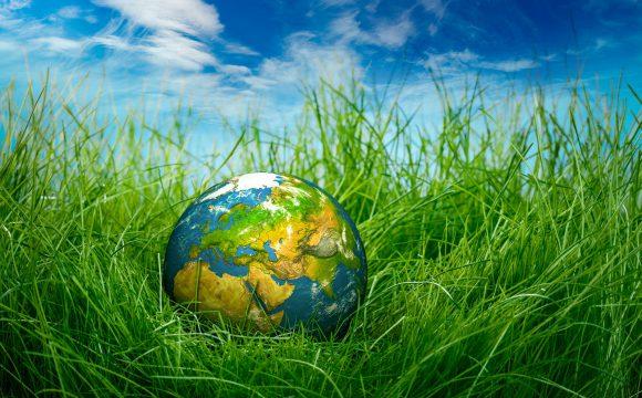 Algunas acciones para cuidar nuestro planeta